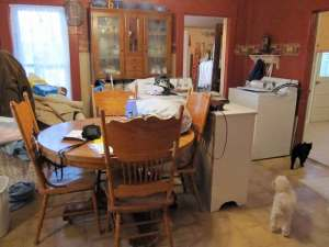 Everything Including the Kitchen Sink